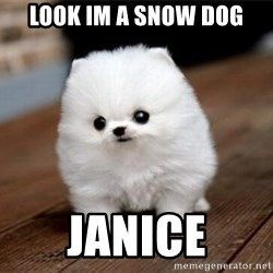 more meat for my duck - look im a snow dog janice
