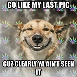 Stoner Dog - Go like my last pic Cuz clearly ya ain't seen it