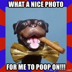 Triumph the Insult Comic Dog - What a nice photo For me to poop on!!!