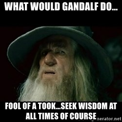 no memory gandalf - what would gandalf do... fool of a took...seek wisdom at all times of course