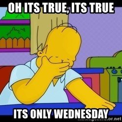 Homer Facepalm - oh its true, its true its only wednesday