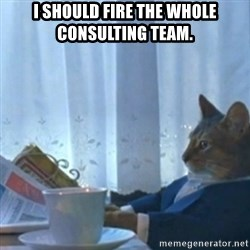 Sophisticated Cat Meme - I should fire the whole consulting team.