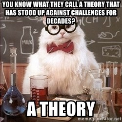 Science Cat - You know what they call a theory that has stood up against challenges for decades? a theory