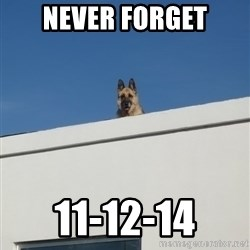 Roof Dog - Never forget 11-12-14