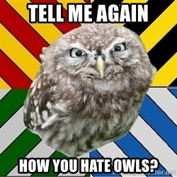 JEALOUS POTTEROMAN - Tell me again How you hate owls?