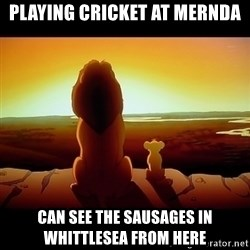 Simba - PLAYING CRICKET AT MERNDA CAN SEE THE SAUSAGES IN WHITTLESEA FROM HERE