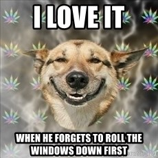 Original Stoner Dog - I love it when he forgets to roll the windows down first