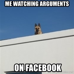 Roof Dog - Me watching arguments  on facebook