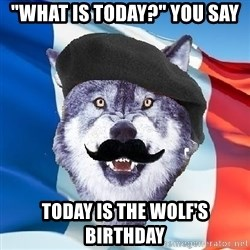 """Monsieur Le Courage Wolf - """"WHAT IS TODAY?"""" You say Today is the wolf's Birthday"""