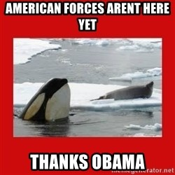 Thanks Obama! - American forces arent here yet Thanks Obama