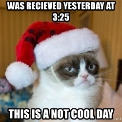 Grumpy Cat Santa Hat - WAS RECIEVED YESTERDAY AT 3:25 THIS IS A NOT COOL DAY