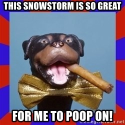 Triumph the Insult Comic Dog - this snowstorm is so great for me to poop on!
