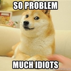 so doge - so problem much idiots