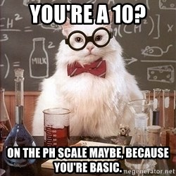 Science Cat - You're a 10? On the pH scale maybe, because you're basic.