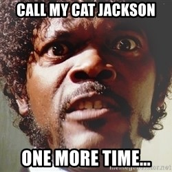 Mad Samuel L Jackson - Call my cat Jackson one more time...