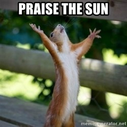 Praising Squirrel - Praise the sun