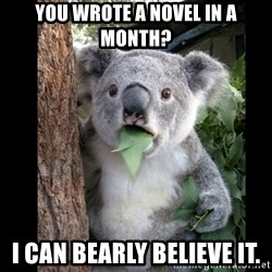 Koala can't believe it - You wrote a novel in a month? I can bearly believe it.