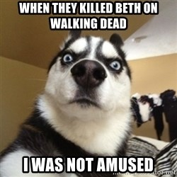 Surprised Husky - when they killed beth on walking dead i was not amused