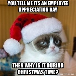 Grumpy Cat Santa Hat - you tell me its an employee appreciation day then why is it during christmas time?