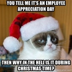 Grumpy Cat Santa Hat - you tell me it's an employee appreciation day then why in the hell is it during christmas time?