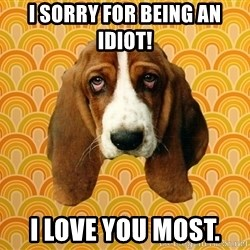 SAD DOG - I sorry for being an idiot! I love you most.