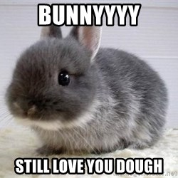 ADHD Bunny - Bunnyyyy Still love you dough