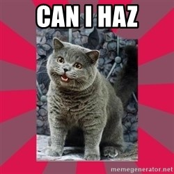 I can haz - CAN I HAZ