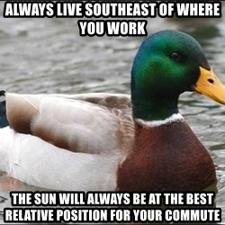 Actual Advice Mallard 1 - Always live southeast of where you work the sun will always be at the best relative position for your commute