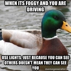 Actual Advice Mallard 1 - When its foggy and you are driving Use lights. just because you can see others doesn't mean they can see you