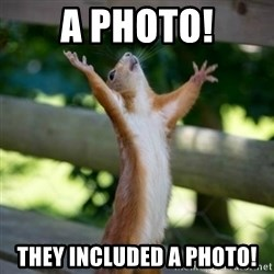 Praising Squirrel - A photo! They included a photo!