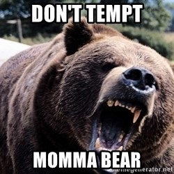 Bear week - Don't tempt momma bear