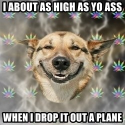 Stoner Dog - i about as high as yo ass  when i drop it out a plane
