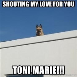 Roof Dog - shouting my love for you Toni Marie!!!