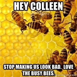 Honeybees - Hey colleen Stop making us look bad.  Love the busy bees.