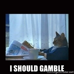 i should buy a boat cat -  I should gamble