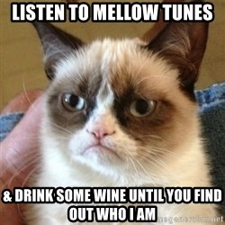 not funny cat - listen to mellow tunes  & drink some wine until you find out WHO I AM