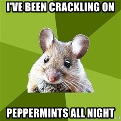 Prospective Museum Professional Mouse - I've been crackling on Peppermints all night