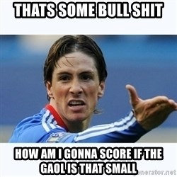 Fernando Torres - thats some bull shit  how am i gonna score if the gaol is that small
