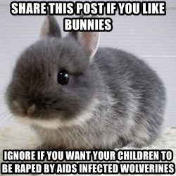 ADHD Bunny - Share this post if you like bunnies Ignore if you want your children to be raped by aids infected wolverines