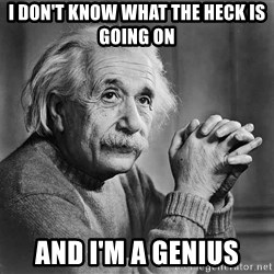 Albert Einstein - i don't know what the heck is going on and i'm a genius