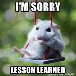Sorry I'm not Sorry - I'm sorry Lesson learned