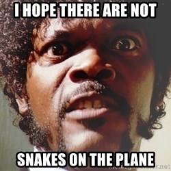 Mad Samuel L Jackson - I hope there are not snakes on the plane