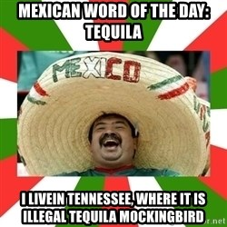 Sombrero Mexican - Mexican word of the day: Tequila I livein tennessee, where it is illegal tequila mockingbird