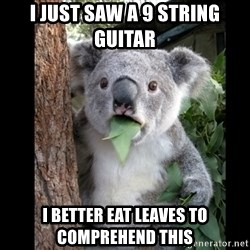 Koala can't believe it - I just saw a 9 string guitar  I better eat leaves to comprehend this