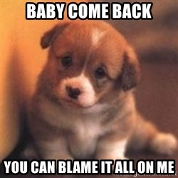 cute puppy - Baby come back You can blame it all on me