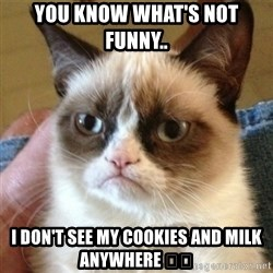 not funny cat - You know what's not funny..  I don't see my cookies and milk anywhere 👀💁