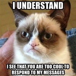 not funny cat - I understand  I see that you are too cool to respond to my messages
