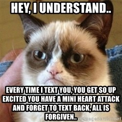 not funny cat - Hey, I understand..  Every time I text you, you get so up excited you have a mini heart attack and forget to text back, all is forgiven..