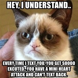 not funny cat - Hey, I understand..  Every time I text you, you get soooo excuted.. You have a mini heart attack and can't text back.