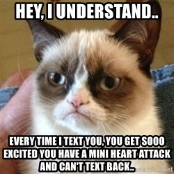 not funny cat - Hey, I understand..  Every time I text you, you get sooo excited you have a mini heart attack and CAN'T text back..